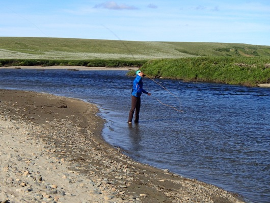 Eric Taber fly fishes on the Arctic tundra.