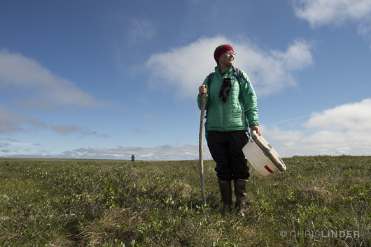 Kenzie Kuhn at the tundra site, 2014.