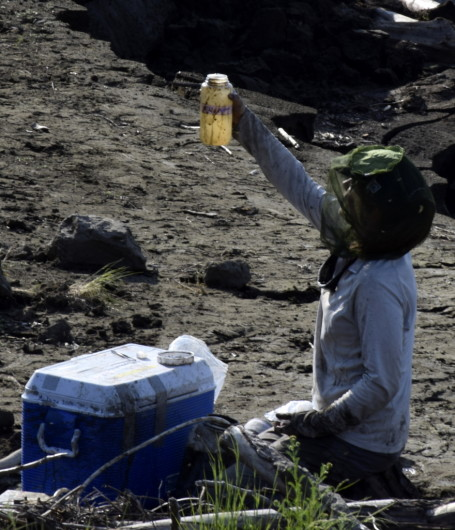 Megan Behnke with a bottle of filtered water from thawing permafrost.