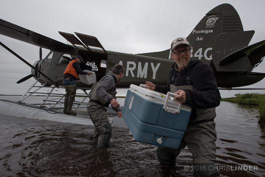 John Schade hauls a cooler of scientific equipment (or sausage?) from a float plane to the camp, Yukon delta, Alaska.